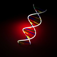 genes-dna-sxc