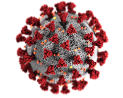 This illustration, created at the Centers for Disease Control and Prevention (CDC), reveals ultrastructural morphology exhibited by coronaviruses. A novel coronavirus, named Severe Acute Respiratory Syndrome coronavirus 2 (SARS-CoV-2), was identified as the cause of an outbreak of respiratory illness first detected in Wuhan, China in 2019. The illness caused by this virus has been named coronavirus disease 2019 (COVID-19). (CDC/Alissa Eckert, MS)