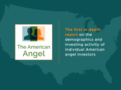the-american-angel-pdf-image.png